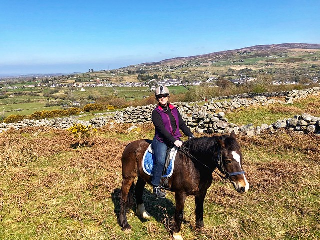 equestrian travel expert nancy d brown, horseback riding in snowdonia national park, welsh cobb, wales countryside, north wales pony trek