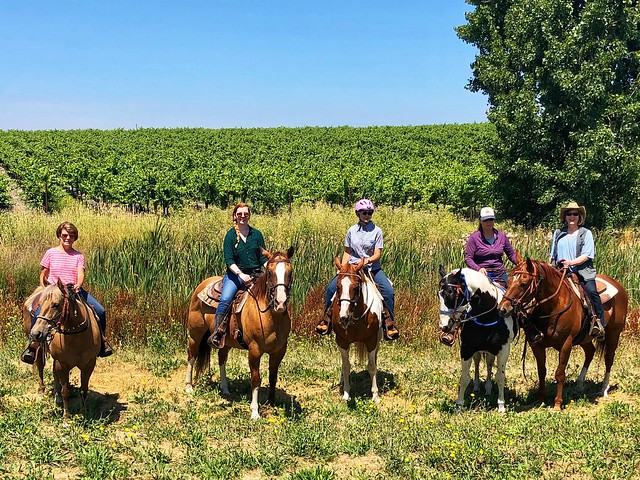 Kim Fields, Marcy Shoemaker, Jill Valavanis, Chriss Fife and Nancy D. Brown riding horseback at Alta Vista Vineyards in Sonoma wine country.