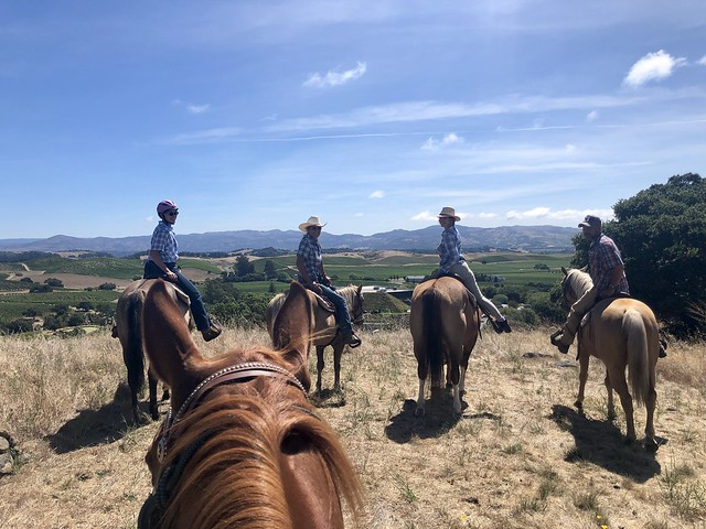 Horseback riders Jill Valavanis, Michelle Rogers, Isabelle Truchon and Travis Laugeson on horseback above Artesa Vineyards and Winery in Napa, California.