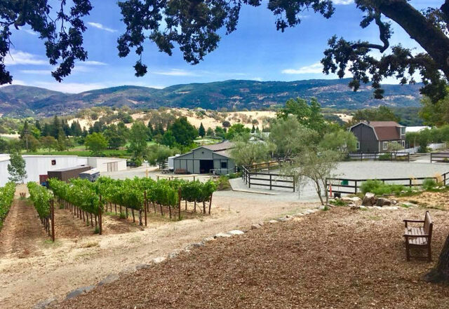 Photo of Shadybrook Estate Winery, vineyards and the horse barn at Napa Valley Trail Rides. Rolling hills of Napa Valley in the distance.