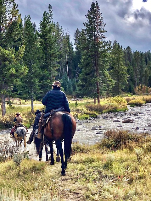 Three horses and riders from Covered Wagon Ranch cross the Taylor Fork River, northwest of Yellowstone National Park.