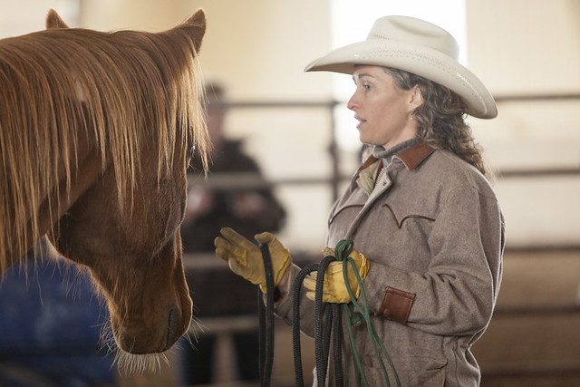 Hall of Fame Cowgirl Stacy Westfall working with a horse at the Resort at Paws Up in Greenough, Montana.