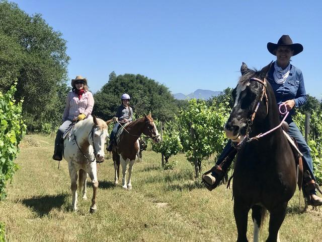 Nancy D. Brown and Nancy Fiddler practice social distancing on horseback in Sonoma County vineyards.