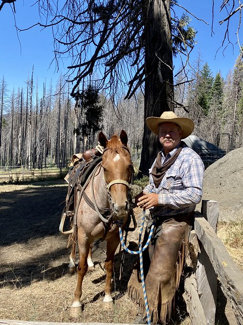 Yosemite Trails owner Larry Knapp and his horse ready to take into Yosemite horseback riding.